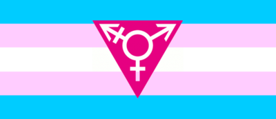Transgender flag-triangle
